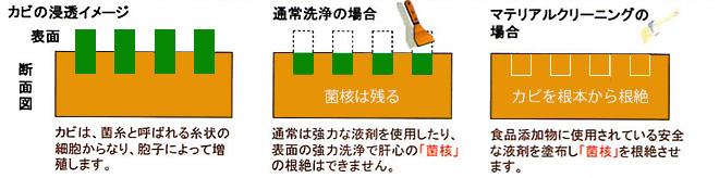 カビの浸透イメージ/通常洗浄の場合/カビ・カルキ落としの場合