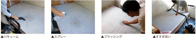 バキューム/スプレー/ブラッシング/すすぎ洗い